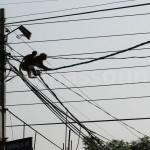 Monkeys near Swayambhunath