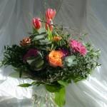 Blumendetail und Wiesen (19)