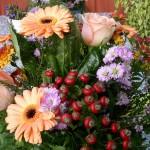 Blumendetail und Wiesen (5)